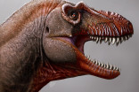 New 'reaper of death' tyrannosaur is the oldest found in Canada