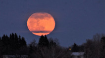 "Tonight's ""Full Pink Moon"" will be the biggest, brightest supermoon of the year"