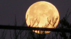 Three fun facts about tonight's Full Snow Moon