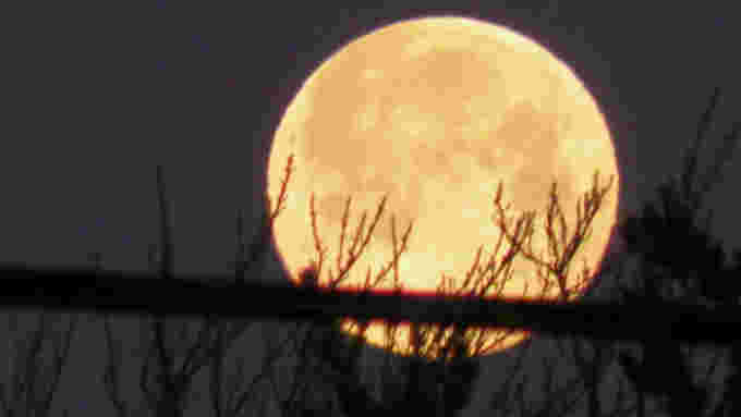 Full-Snow-Moon-2020-Darlene-MacLeod-Smith-UGC