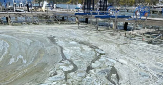 People warned to stay out of Okanagan Valley lake due to algae bloom