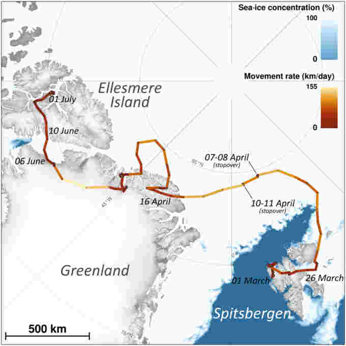 Norway tracking Polar Institute