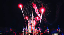 Rabies alert issued at parts of Disney World due to feral cat