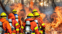 16 B.C. firefighters contract COVID-19 through California deployment