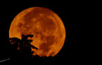 Here are five cool facts about tonight's 'micro' Harvest Moon