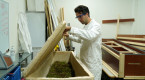 Biodegradable 'living coffin' aims to provide source for life after death