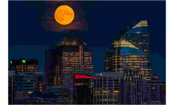 ugc calgary full moon