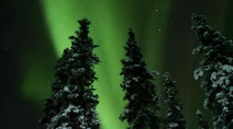 IN PHOTOS: Northern Lights dance across Yukon winter skies this week
