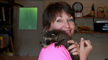 "Caring for over 60 orphaned raccoons is a ""labour of love"" says Saskatoon woman"