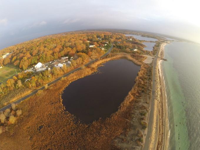(Sandra Brosnahan, Woods Hole Coastal and Marine Science Center/USGS)