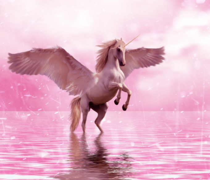 The Weather Network - A real-life 'Unicorn' was saved in Australia