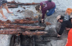 Ancient shipwreck washes ashore after Tropical Storm Eta hit Florida