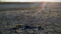 'Extreme' drought in parts of Saskatchewan: Ag Canada