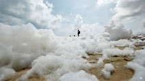 Toxic foam covers popular beaches in India