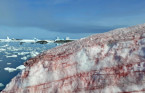 'Blood snow' appears on Antarctic Peninsula