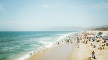 7 beach livecams to keep your spirits up during COVID-19 isolation