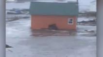 Kelowna, British Columbia 14 Day Weather Forecast - The