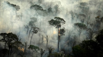 Fires in Brazilian Amazon reached a 13-year high in June