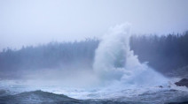 PHOTOS: Teddy roars into Atlantic Canada with intense winds, knocks out power