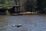 Flood emergency continues for Ontario's cottage country