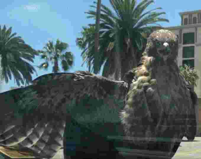 hawk on car screencap