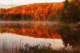 Take in Ontario's beautiful fall colours this Thanksgiving