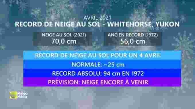 RECORD NEIGE AU SOL (1)