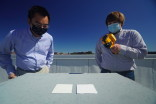 White 'cooling paint' could slash carbon emissions from buildings