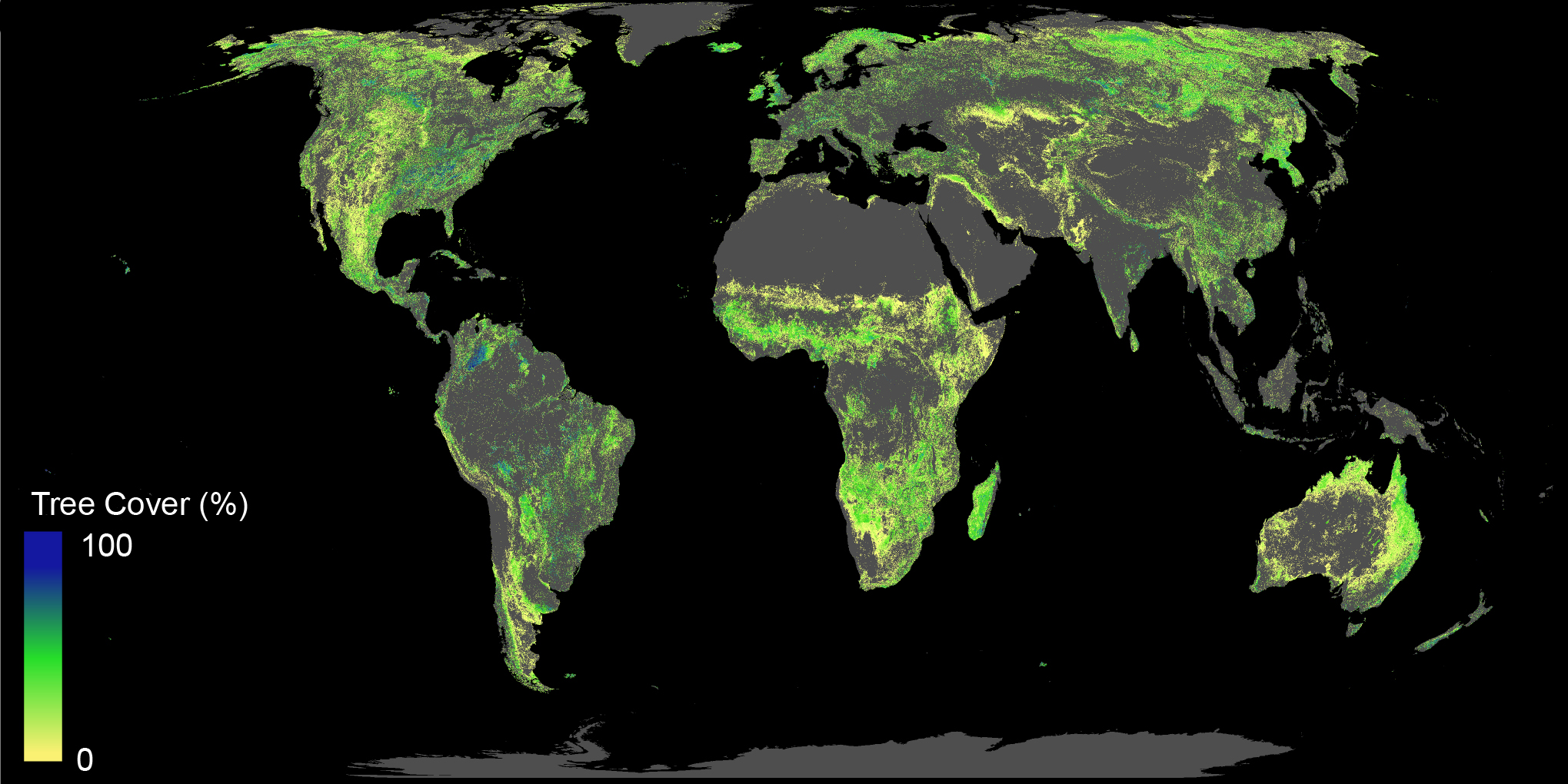 Growing 1 billion trees may solve global warming