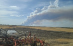 Prince Albert declares state of emergency, partial evacuation as forest burns