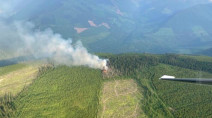 Lightning ignites dozens of fires across B.C.'s Southern Interior