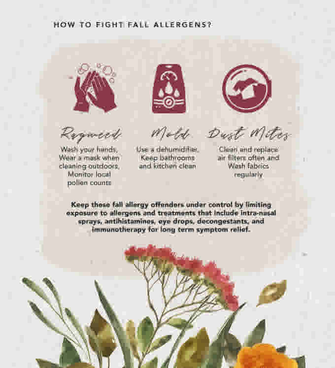 WN Allergies Fall Infographic ENG 3