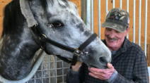 Horse and owner recover after 'hell came to town'