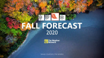 Welcome, Fall! Here's what the next 3 months have ahead