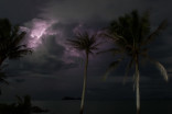 New study finds lightning destroys 832 million trees each year in tropics alone