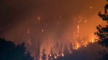 COVID-19 forces BC to rethink emergency response to wildfires, floods