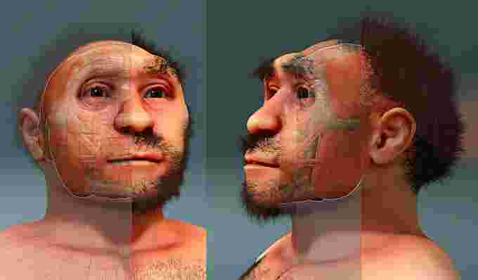 Independent artist interpretation of homo erectus. credit: wikimedia commons