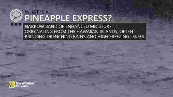 What is a pineapple express?