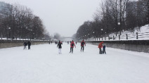 Rideau Canal will open amid state of emergency, NCC announces