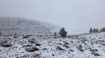 Winter blast brings record chill, rare snow to southern Australia