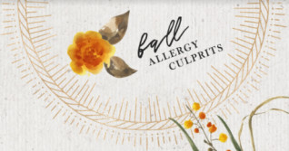Fall Allergy Culprits