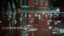 Atlantic: Widespread rainfall, 50-70 mm in parts of Newfoundland