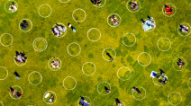 Toronto exploring circles painted on grass to ease physical distancing