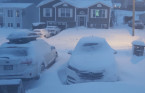 Impossible travel across parts of Newfoundland as winter storm hangs on