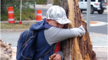 Halifax boy shares tearful goodbye with favourite tree following Dorian