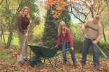 Should I rake leaves off my lawn? No, but yes. Here's why