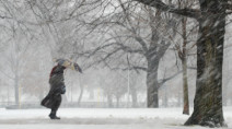 'Crippling blizzard' about to wallop parts of Eastern Canada with 80 cm