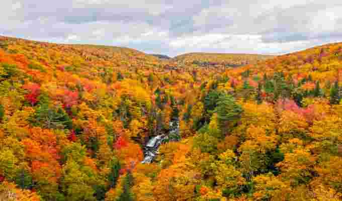https://images.twnmm.com/c55i45ef3o2a/6SavlgUwNX0Qkw5dosGkNt/a51e1f9688ed064126e706bf0f6e2703/Fall_colours_-_Rob_Romard_-_Pipers_Glen_Nova_Scotia_-_October_14_2018.png?fit=scale&w=600&q=80&fm=jpg&h=400