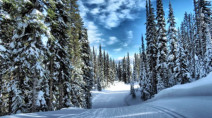 Canada's Ski Forecast: You can thank La Niña for a banner year