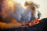 Numerous health problems linked to Australian wildfires, medical agency warns